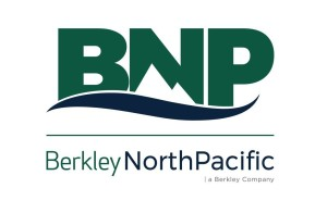 BNP 2.0 Logo Square FINAL Pantone
